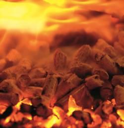 Firestixx Brennbild